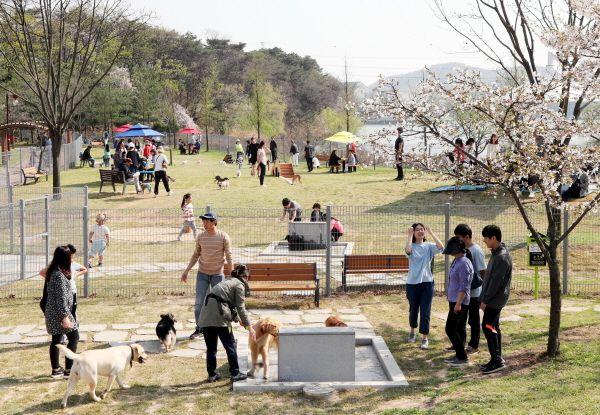 공설 동물장묘시설 신설 부지 공모